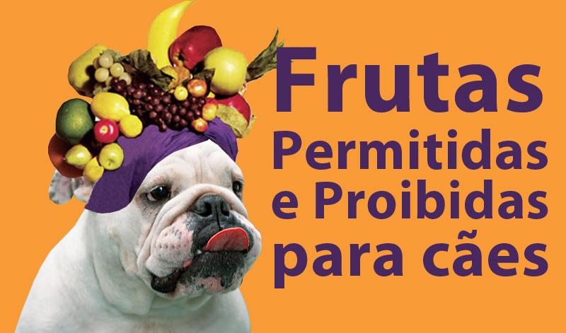 frutas-permitidas-proibidas-caes-tn